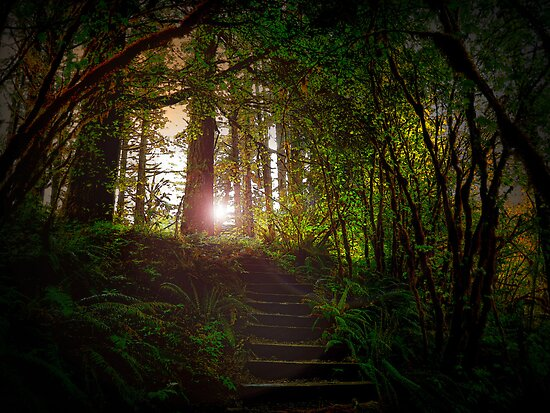 On The Way To His Glory by Charles & Patricia   Harkins ~ Picture Oregon