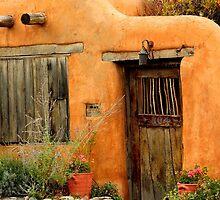 Canyon Road, Santa Fe by Barbara Muller