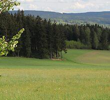 Saxon Landscape by karina5