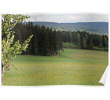 Saxon Landscape Poster