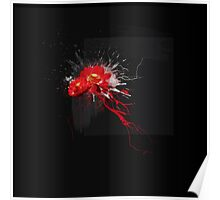Red lotus flowers Poster