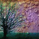 Ariel's Forest by Gal Lo Leggio