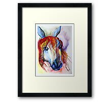 Colorful horse abstract Framed Print