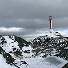 Cape Forchu Light in winter by Shawn Bourque