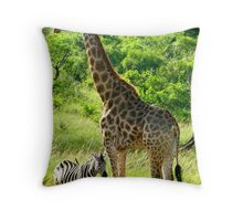 What a Size Difference Throw Pillow