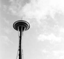 The Needle by Julie Van Tosh Photography