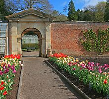 The Walled Garden, Tyntesfield by RedHillDigital