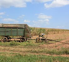 Harvest Time by Jackie Andress