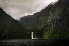 Stirling Falls, Milford Sound by Michael Treloar