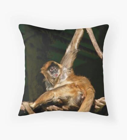 Well, how about this pose? Throw Pillow