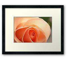 Light and romantic Framed Print