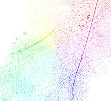 Cracked Rainbow by AHakir
