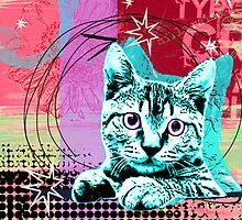 Kitty Kitty by Glenyss Ryan