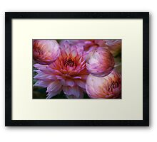 Blooms and bubbles abound!   Framed Print