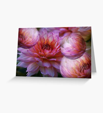 Blooms and bubbles abound!   Greeting Card