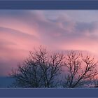 Pink fire of inspiration clouds by Gabeler Anne