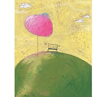 The bench under the cherry tree. Photographic Print