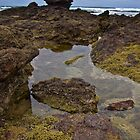 Phillip Island Rock Pools by PhotoJoJo