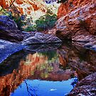 Waterhole reflections by Paul Moore