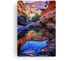 Waterhole reflections Canvas Print