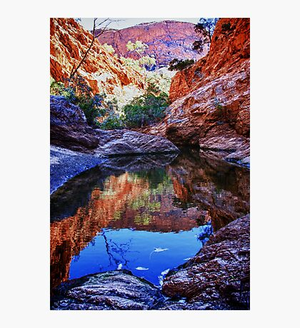 Waterhole reflections Photographic Print