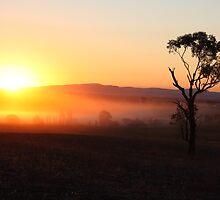 Weddin Sunset 1 by Phillip Weyers