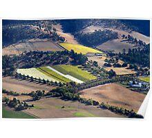 Coal River Vineyard from the air - Tasmania Poster