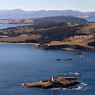 Iron Pot Lighthouse from the air - Hobart, Tasmania by clickedbynic