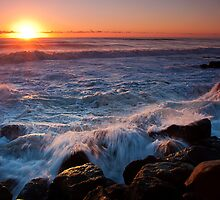 Snapper Rocks Rush by dbax