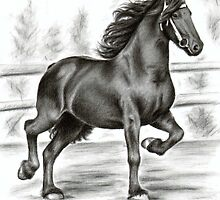 Friesian Horse by Nicole Zeug