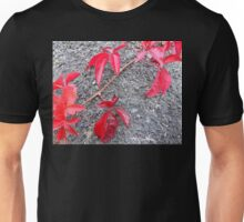 Red On Grey Unisex T-Shirt