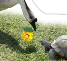 The Turtle and The Goose Sticker