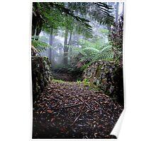 Valder Bridge - Mt Wilson NSW Australia Poster