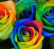 Beautiful rainbow roses  by prettypics75