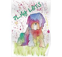 Play Lots Poster