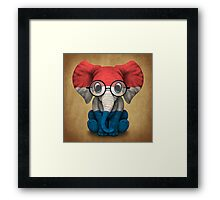 Baby Elephant with Glasses and Dutch Flag Framed Print