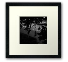 Wandering at Midnight Framed Print