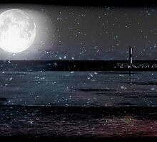 Magical Night © by Dawn M. Becker
