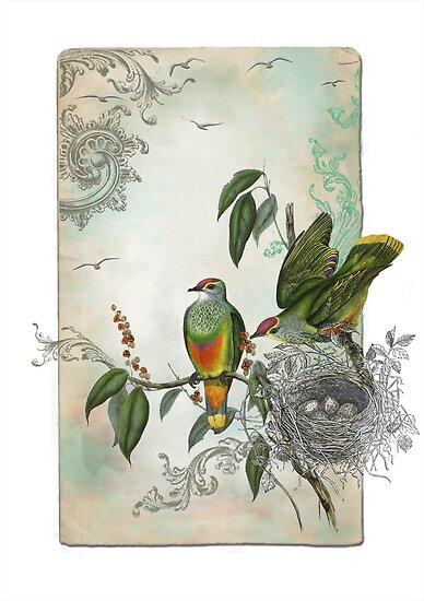 Nesting Birds by fjportfolio