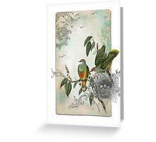 Nesting Birds Greeting Card