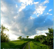 From These Hills with Trendle Ellwood by TrendleEllwood