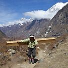 One of the hardest jobs on earth. Langtang, Nepal. by John Spies