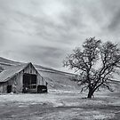 Vanishing Rural Washington 5 by Bryan Peterson
