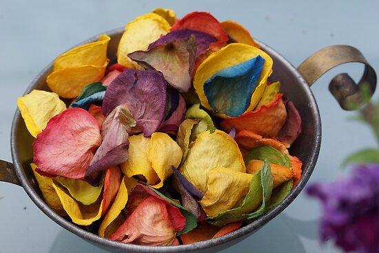 Dried coloured roses  by prettypics75