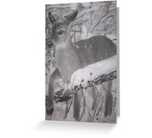 gentle nature  Greeting Card