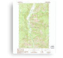 USGS Topo Map Washington State WA Louie Creek 242076 1989 24000 Canvas Print