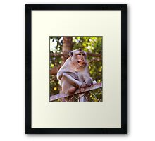 Ouch...this fence is so painful! Framed Print