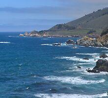 A West Coast Friendship by johnlimiac