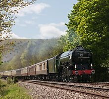 The Cathedrals Express by Steve  Liptrot