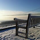 The Humber Bridge in Winter by davidjedwards